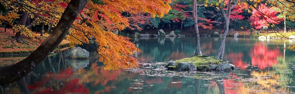 Autumn Leaves in Kyoto | Visit Kansai 2020