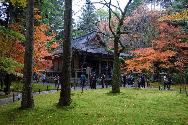 sanzenin_temple_ohara_kyoto