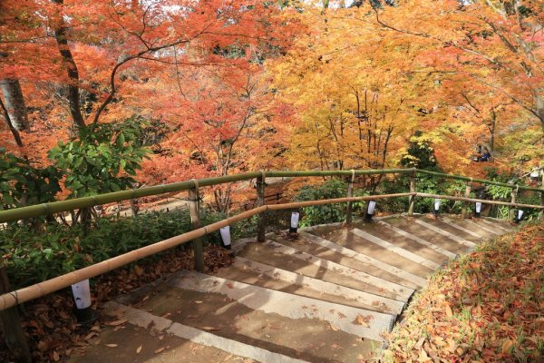Autumn_in_Kitano_Tenmangu_Japan