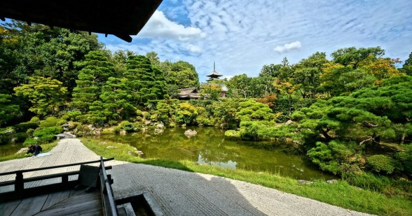 Japanese Gardens - History, Types, Elements