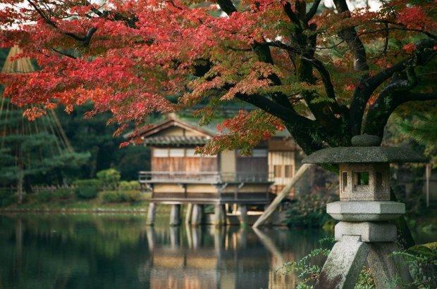 kenrokuen_garden_autumn