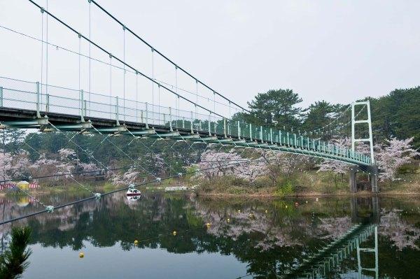 ashino_park_bridge_aomori