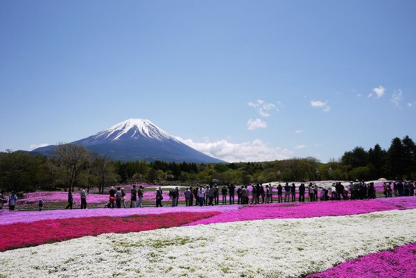 scenic_beauty_mount_fuji_japan