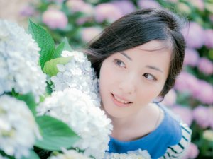 hydrangea_flower_japan