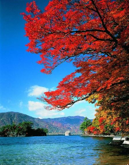 autumn_leaves_lake_towada