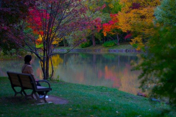 nakajima_park_autumn_foliage_hokkaido