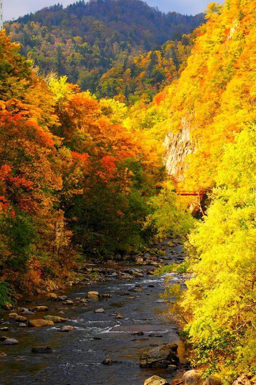 autumn_foliage_jozankei_onsen_sapporo