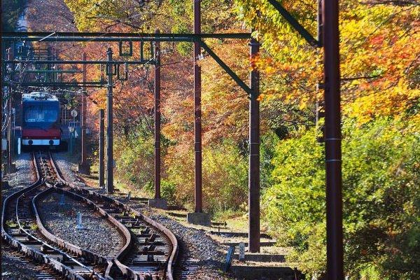 hakone_tozan_train