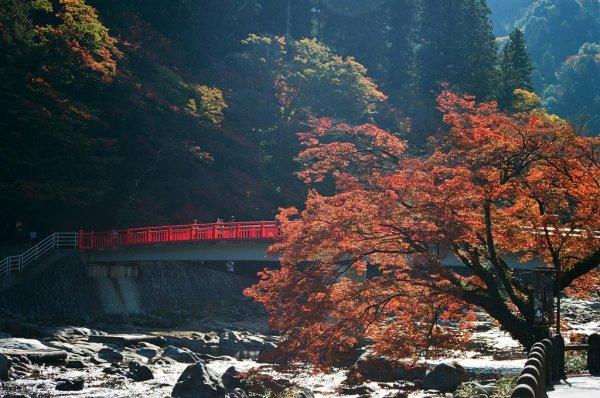 taigetsukyo_bridge_korankei