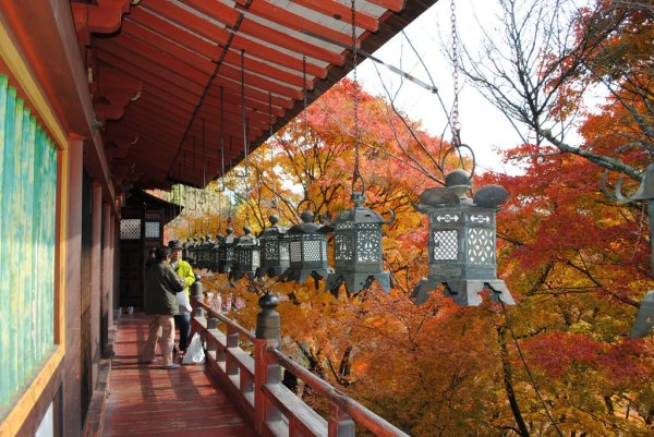 tanzan_shrine_fall_leaves
