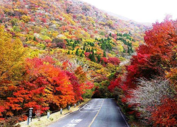 kuju_mountains_fall_colors