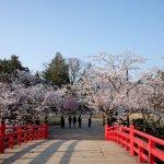 Tohoku Spring Itinerary | Travel Plan 2017
