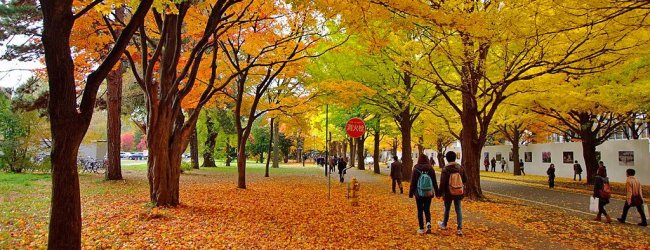 10 Best Places to Visit in Sapporo in Autumn