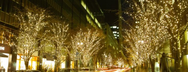 10 Best Places to See Winter Illuminations in Tokyo