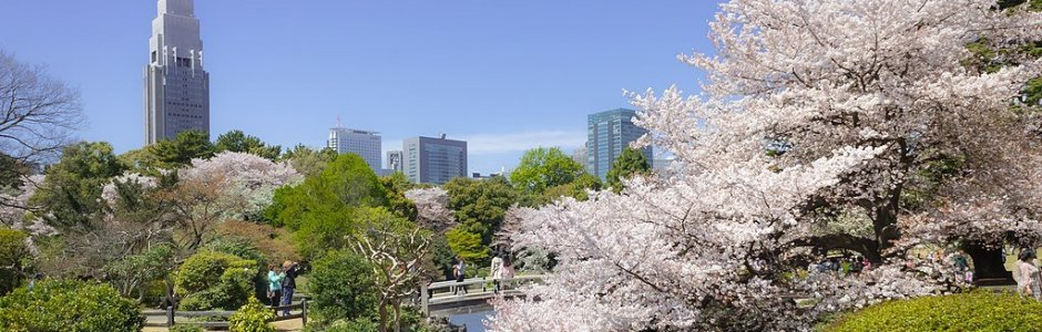 10 Best Parks and Gardens to Visit in Tokyo