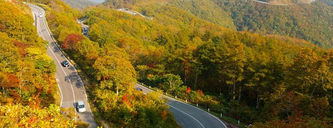 8 Best Places to see Autumn Leaves in Fukushima