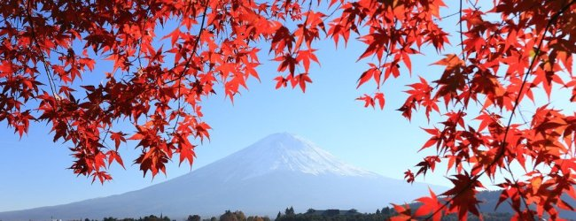 8 Incredible Places for Viewing Mount Fuji