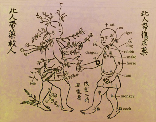 Bubishi-Herb-TN