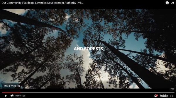 Forests, Video