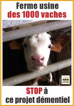Panneau de manifestation contre l'élevage des 1000 vaches