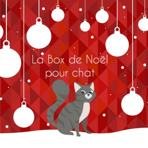 La Box de Noël pour chat - La Box Naturelle