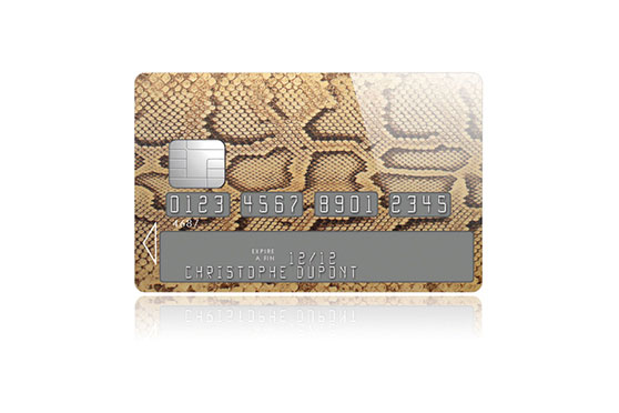 Sticker Carte Bleue Python (Marron)