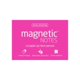 Magnetic Notes M Tesla Amazing Rose