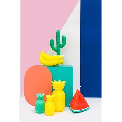 Bougie Cactus Sunny Life
