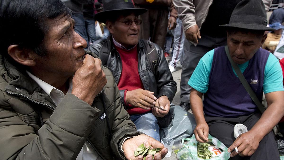 Bolivia Coca Protest