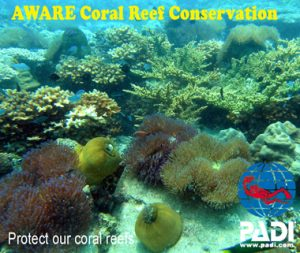 padi-aware-coral-reef-conservation