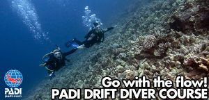 padi_drift_diver_course