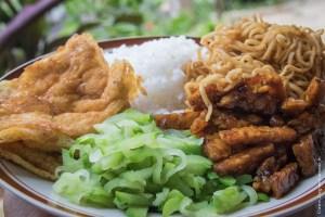 végétarien-tempeh et tofu