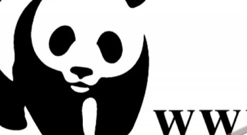 "< img src=""https://www.la-notizia.net/wwf"" alt=""wwf"""