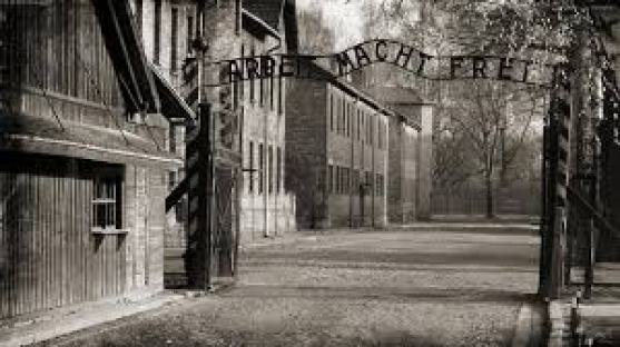 Risultati immagini per la liberazione di auschwitz rai