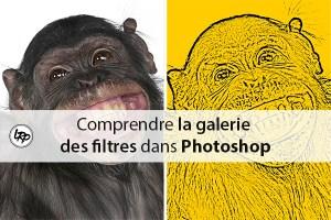Comprendre la galerie des filtres dans photoshop sur le blog La Retouche photo