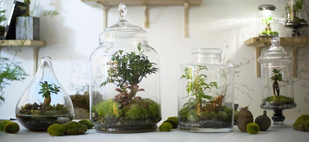 green-factory-bars-a-plantes
