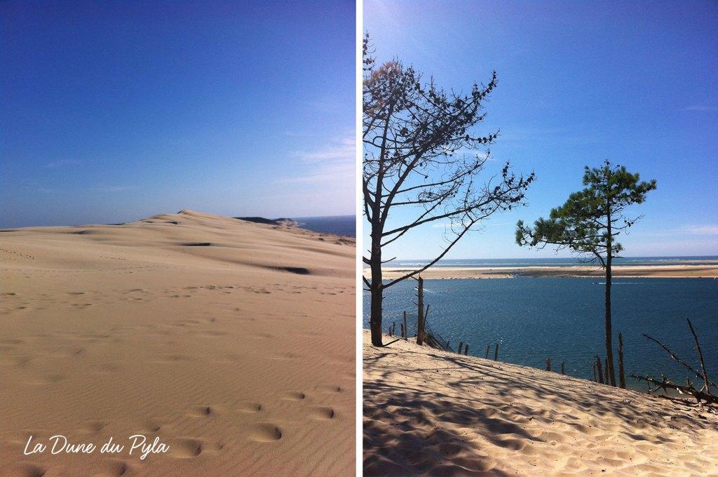 Vue-dune-du-Pyla-bassin-d-arcachon