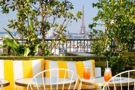 perruche-rooftop-paris-printemps-de-l-homme
