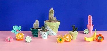 cactus-merci-raymond-x-la-seinographe-3