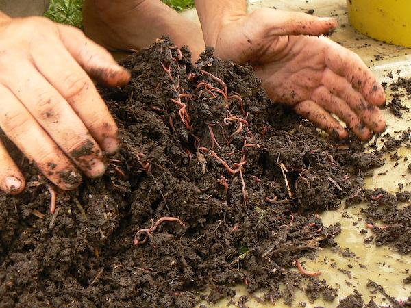 faire son compost