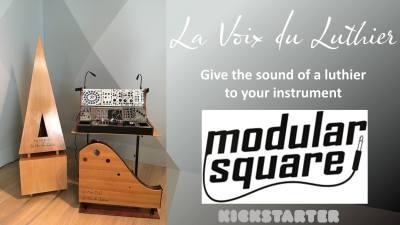 La Voix du Luthier - Modularsquare banner