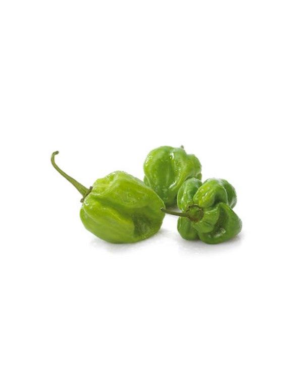 Green Habanero (Rodo)