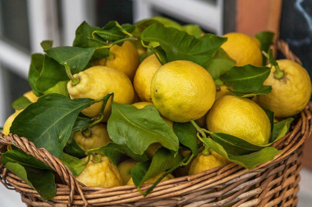 Yellow lemons in a basket in Cinque Terre Italy