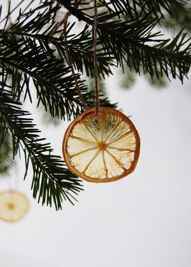 Dried Fruit DIY Ornaments hanging on Christmas tree