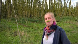 Brasseuse de Bat dans un champ de houblon