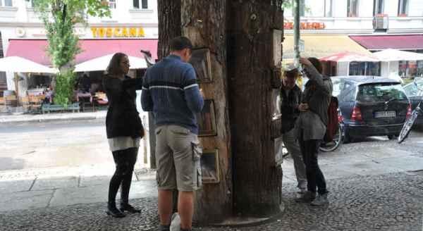 Book-tree6