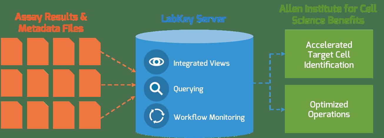 Allen Institute for Cell Science + LabKey Server Workflow