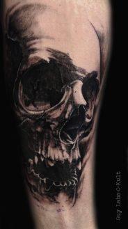Graphical Skull 2016