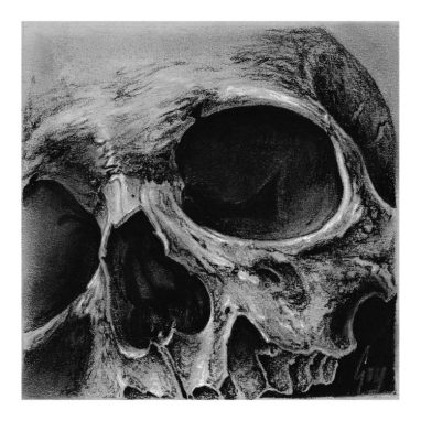 "Charcoal Drawing ""Cornerskull"" by Guy Labo-O-Kult"
