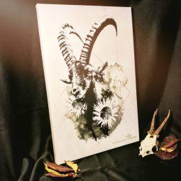 """""""Capra Ibex"""" – HelvEdition by Ka L-O-K"""